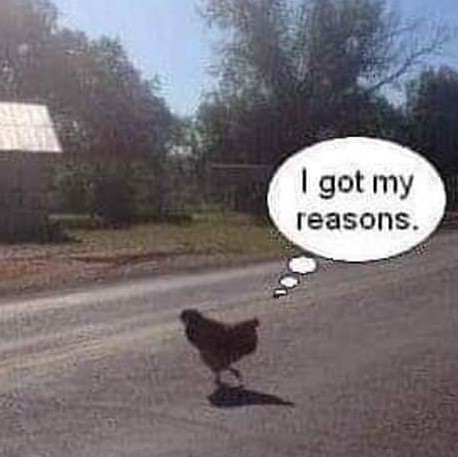 Chicken crossing the roaad